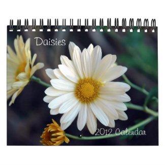 2012 Daisies Wall Calendar calendar