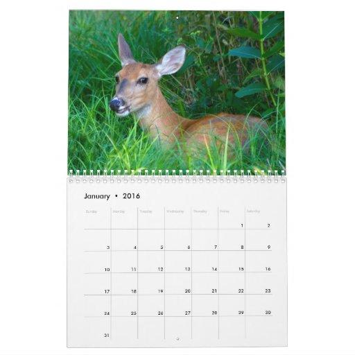 2012 Deer Lovers Calendar