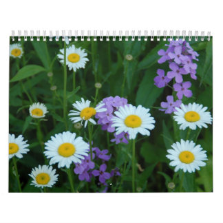 2012 Flower Calendar by Aimee Maher