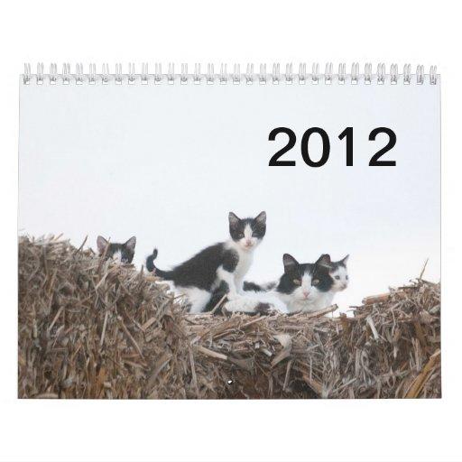 2012 gatitos de rancho de los pozos calendarios