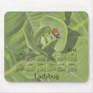 2012 Ladybug Calendar Mousepad