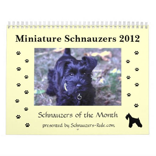 2012 Miniature Schnauzer Calendar