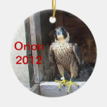 2012 Orion Ornament