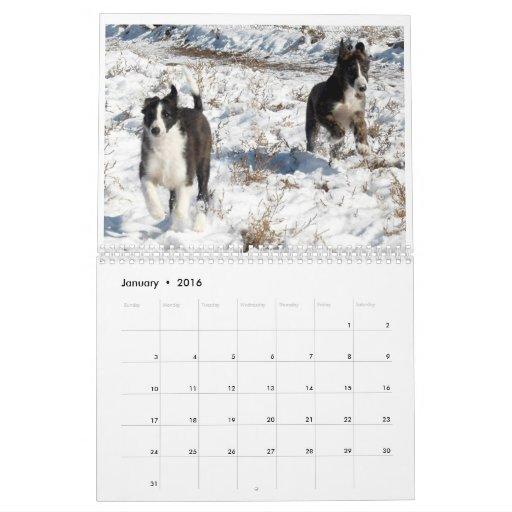 2012 Silken Windhounds Puppies 2 Calendar