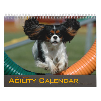 2012 Small Dog Tire Jump Agility Calendar