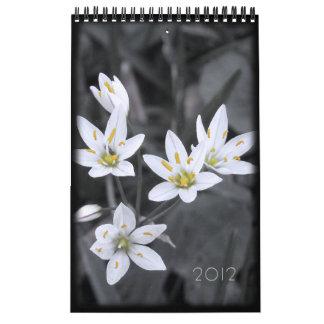 2012 solos meses de la página del calendario 12