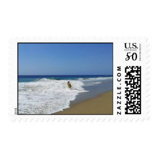 20130215 BODYBOARDING BOGGIEBOARDING SOSUA BEACH O POSTAGE