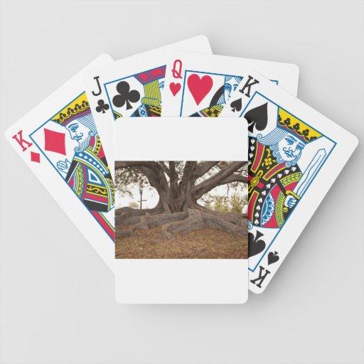 20130615_cal13_0249.jpg baraja de cartas