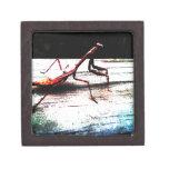20130914_191404 n.jpg cajas de regalo de calidad