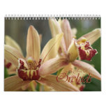 2013 A Year of Orchids floral photography calender Wall Calendars