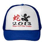 2013 años de la serpiente gorras de camionero