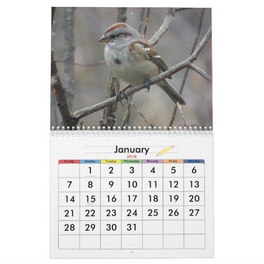 2013 Bird Calendar 2