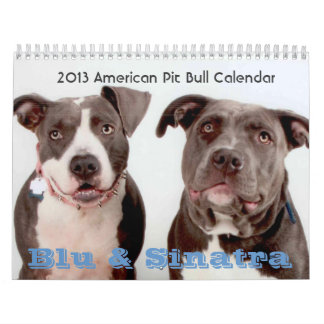 2013 Blu & Sinatra Calendar