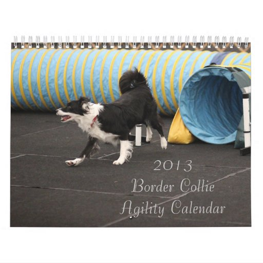 2013 Border Collie Agility Calendar