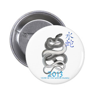 2013 BUTTONS