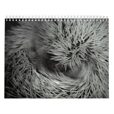 2013 Calendar 3