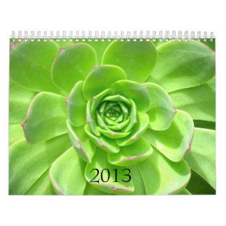2013 calendario - naturaleza