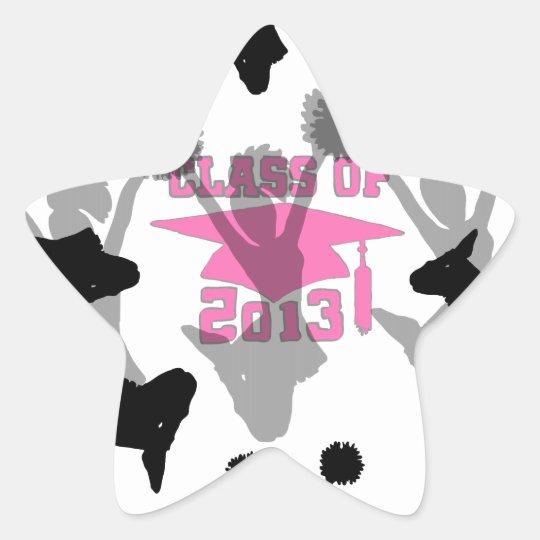2013 Cheerleader graduation Pink Star Sticker