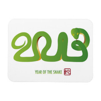 2013 Chinese New Year Magnet