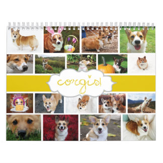 2013 Corgis! Calendar