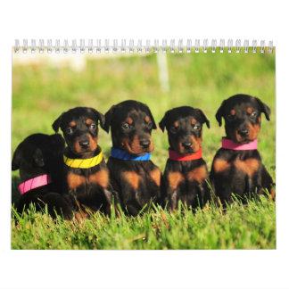 2013 Doberman Puppy Calendar