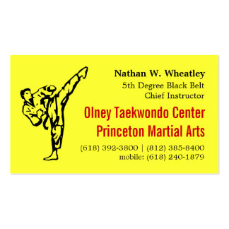 2013 Fall TKD card Double-Sided Standard Business Cards (Pack Of 100)