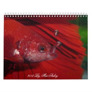 2013 Halfmoon Betta Calendar by Karen Mac Auley