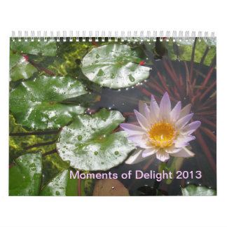 2013 Moments of Delight calendar