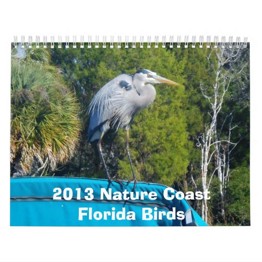2013 Nature Coast Bird Calender Calendar