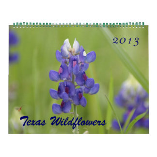 2013 Photos of North Central Texas Wildflowers Calendar