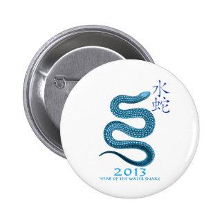 2013 PIN