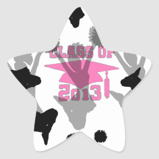 2013 pink gray star sticker