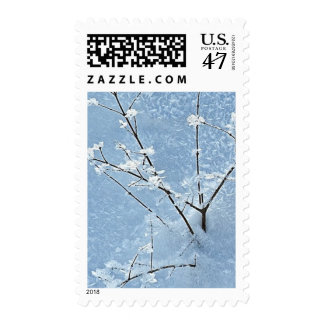 2013 Prostate Cancer Foundation Holiday Stamps