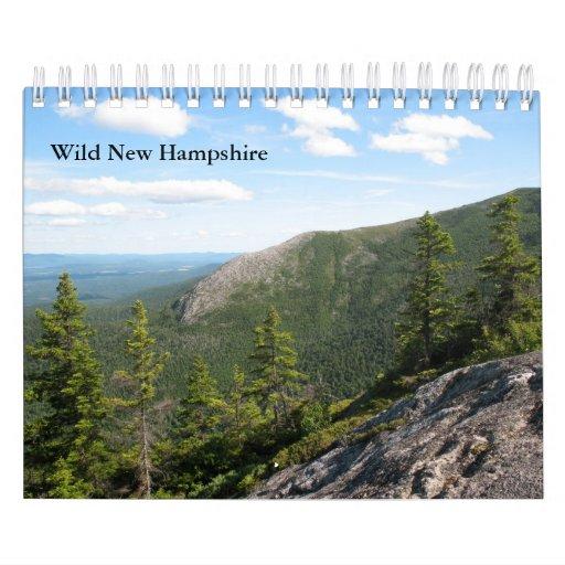 2013 Small Wild New Hampshire Wall Calendar