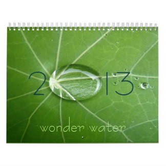 2013 wonder water calendar
