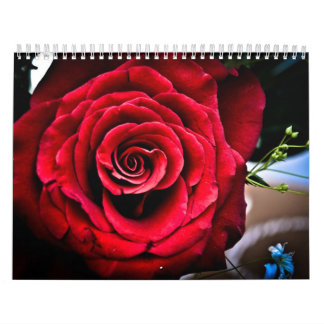2013 Year Calender Wall Calendars