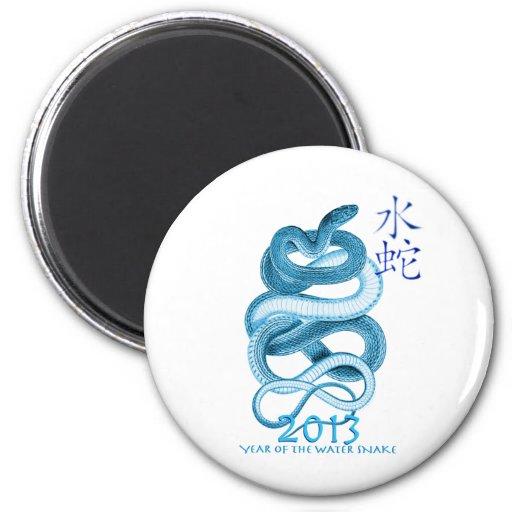 2013 Year of the Snake Fridge Magnets