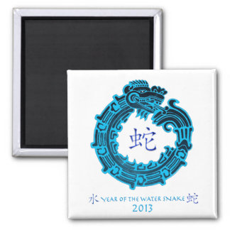 2013 Year of The Water Snake Refrigerator Magnets