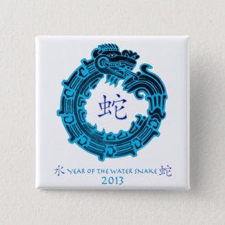 2013 Year of The Water Snake Pinback Button