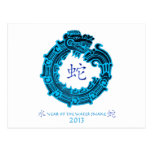 2013 Year of The Water Snake Postcard