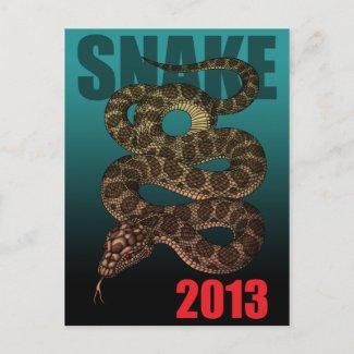 2013SNAKE (C) POST CARD