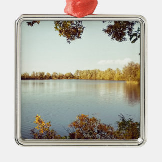 2014-11 Paxton Pit Nature Reserve.jpg Metal Ornament