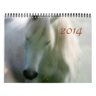 2014 Arabians - Joy of life Calendar