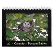2014 Calendar - Possum Babies