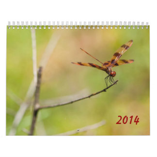 2014 Dragonfly and Damselfly Calendar