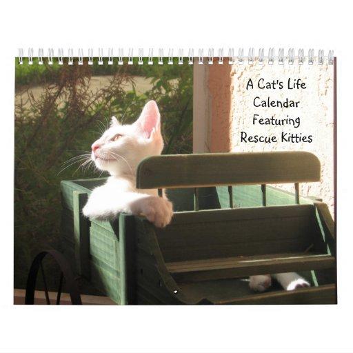 2014  Encore Edition - A Cat's Life Calendar
