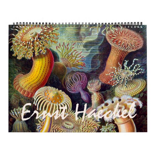 2014 Ernst Haeckel Art, Biology and Botany Wall Calendars