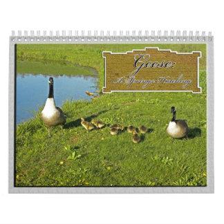 2014 Geese: A Springs Hatching Calender Wall Calendar