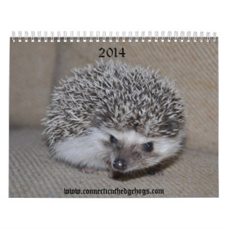 2014 Hedgehog babies calendar