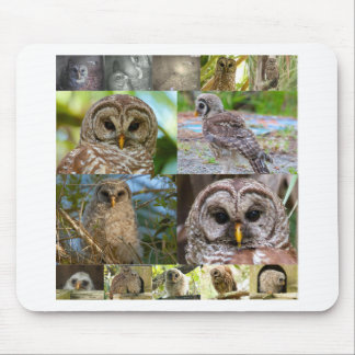 2014 Montage - Owlwatch Mouse Pad